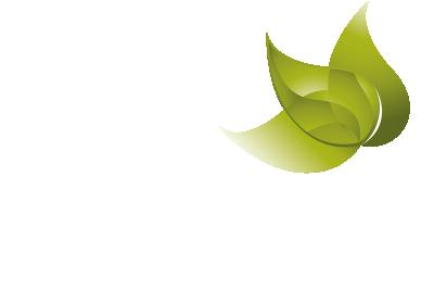 savernake-dental-foot